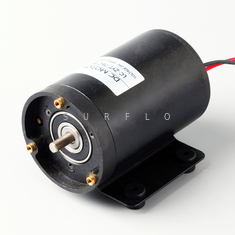 China DC brush motor LC-ZYT-76C-95 1000RPM 80W supplier