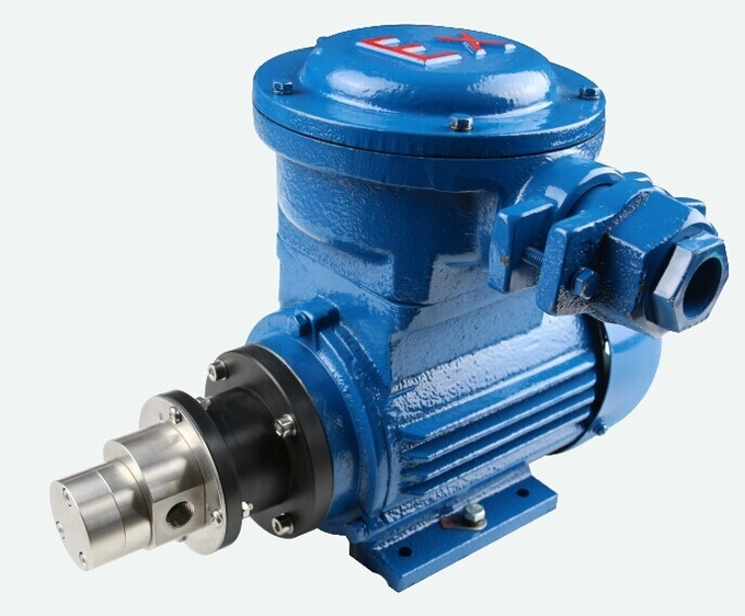 SURFLO FLOWDRIFT AC Asynchronous Motor-powered Magnetic Drive Hi-Pressure Stainless Steel Gear Pump KGP-06H